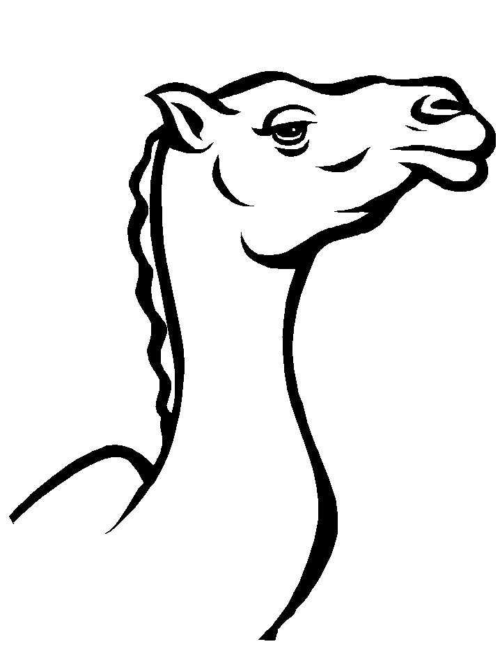 printable camel new camel coloring pages to print top free printable camel printable