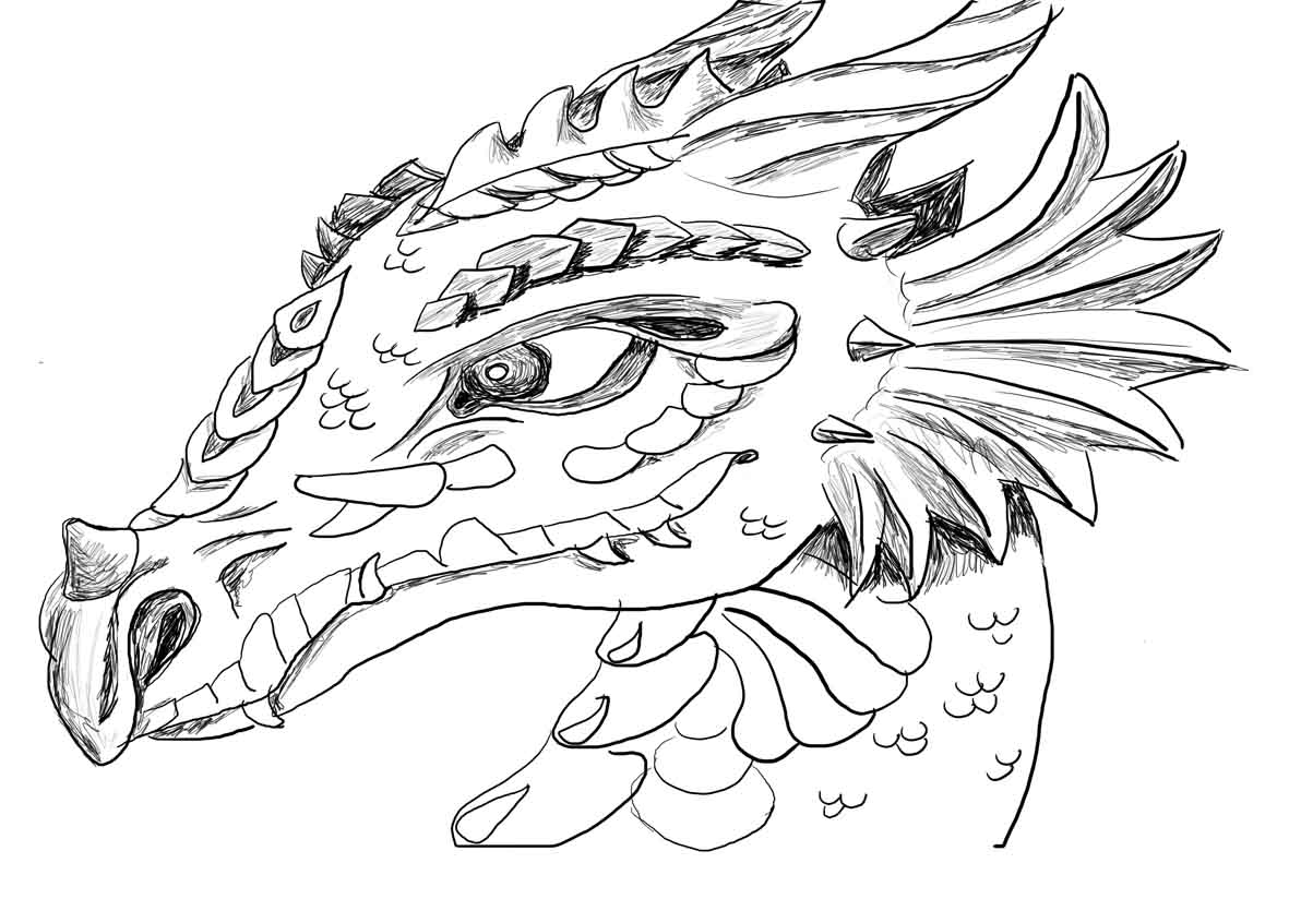 printable dragon pictures realistic dragon coloring pages for adults adult pictures dragon printable