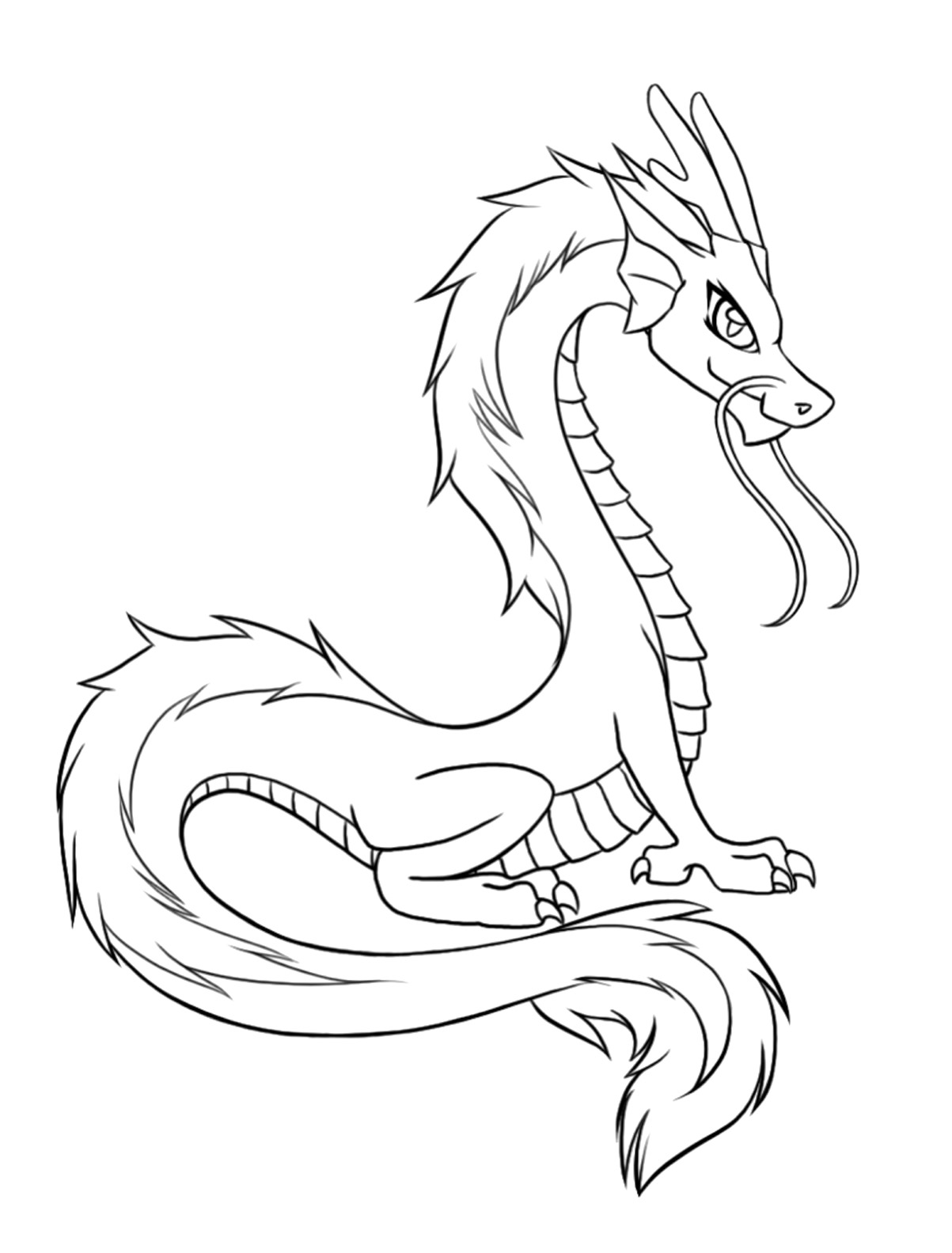 printable dragons dragon coloring pages for adults best coloring pages for printable dragons
