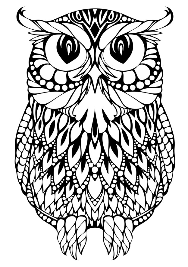 printable owl 10 difficult owl coloring page for adults printable owl