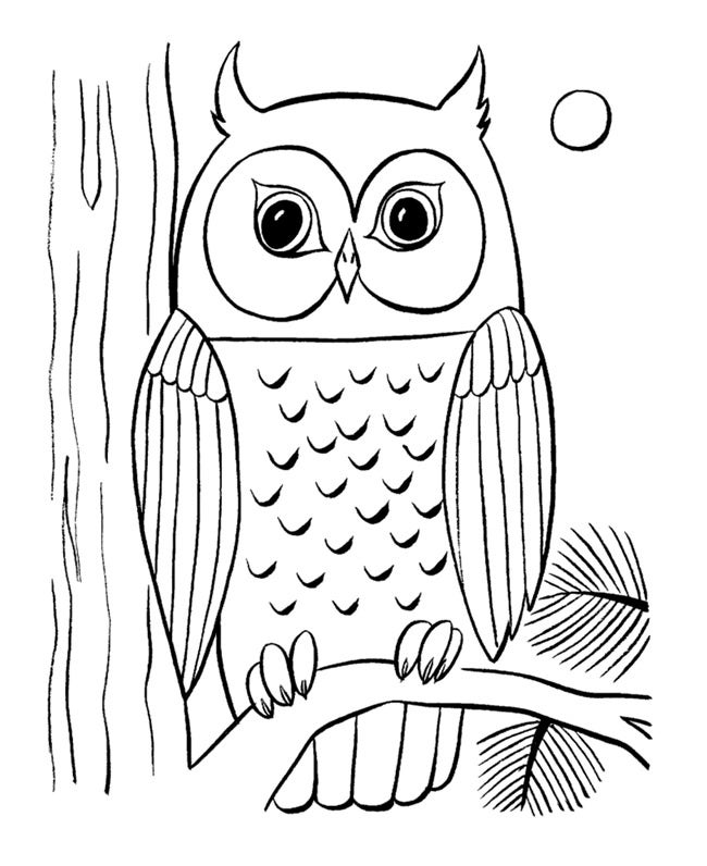 printable owl owl coloring pages to print free printable online owl printable owl