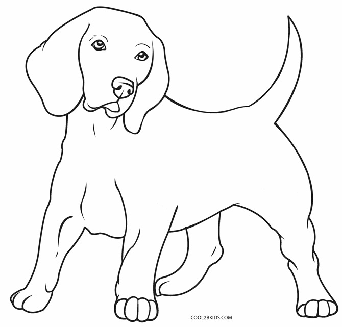 printable picture of a dog printable picture of a dog a picture of dog printable