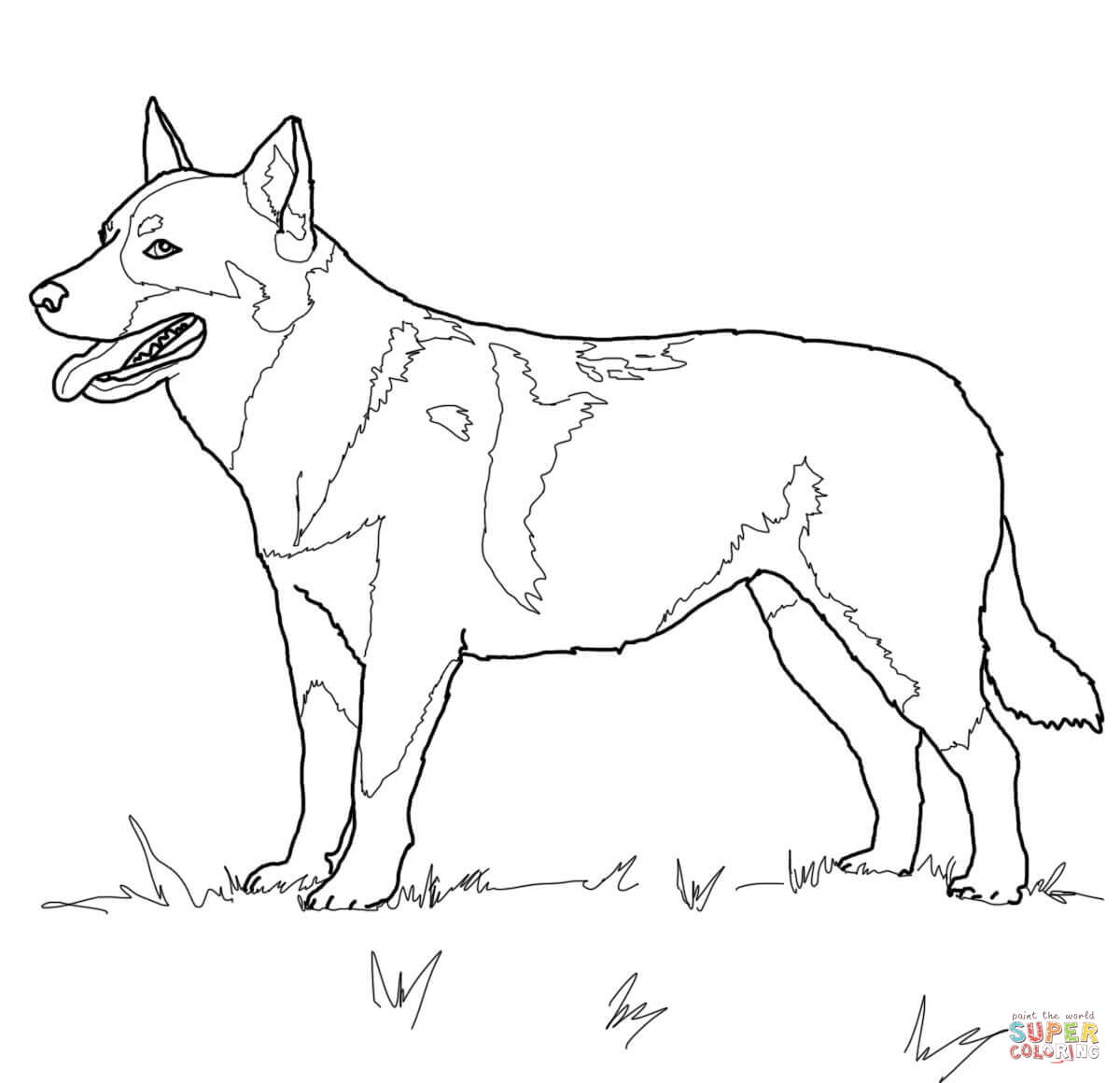 printable realistic dog coloring pages cockapoo dog super coloring puppy coloring pages realistic dog pages printable coloring
