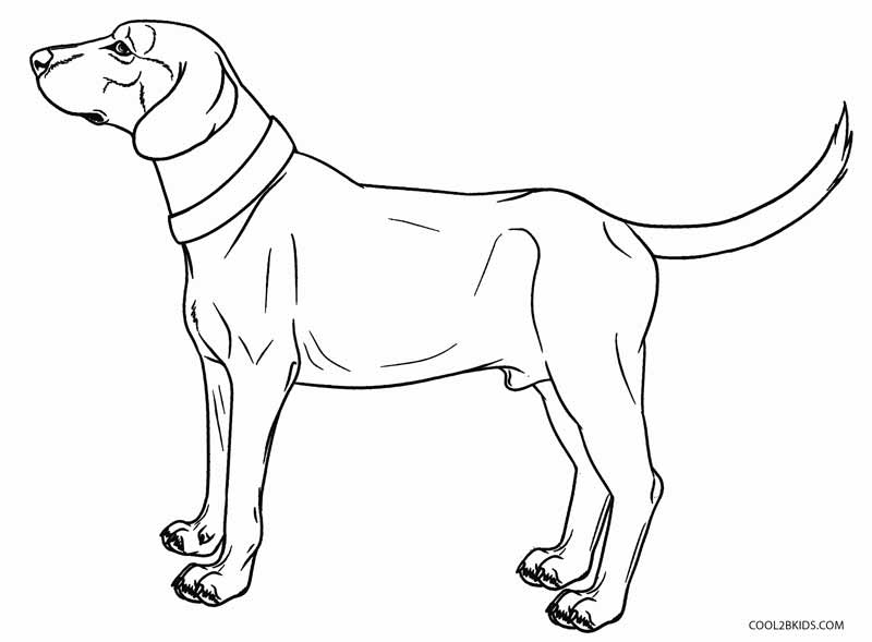 printable realistic dog coloring pages realistic puppy coloring pages coloring home pages realistic coloring printable dog