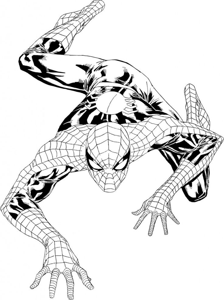 printable spiderman coloring pages spectacular spider man coloring pages coloring home coloring spiderman printable pages