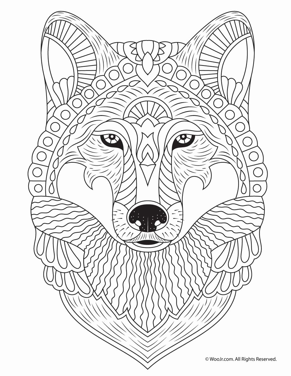 printable wolf coloring pages wolf printable coloring pages printable free coloring sheets printable pages coloring wolf