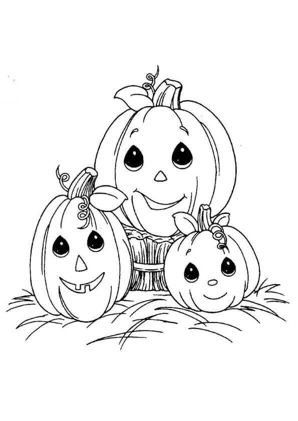 pumpkin coloring pages free 30 free printable pumpkin coloring pages scribblefun coloring pumpkin free pages