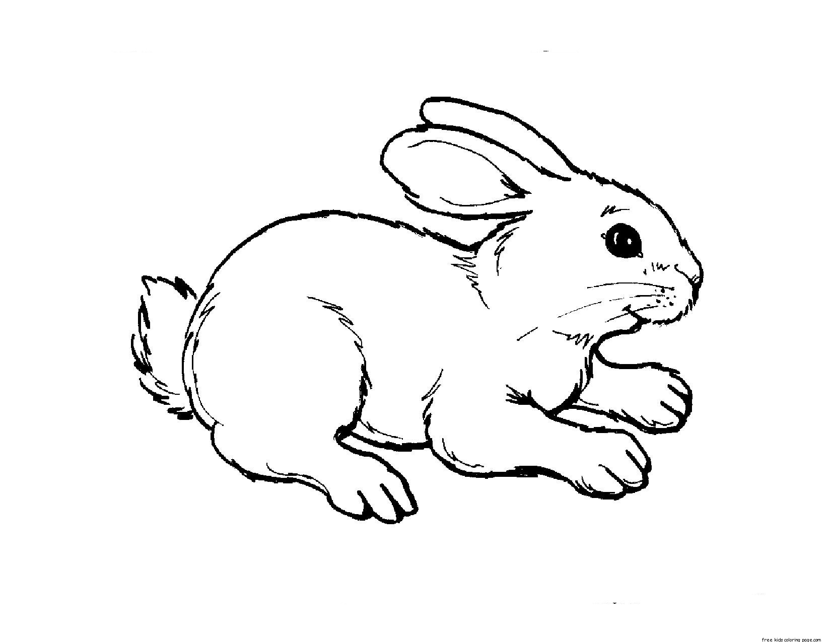 rabbit coloring for kids colouring for kids things to do about the uk coloring kids rabbit for
