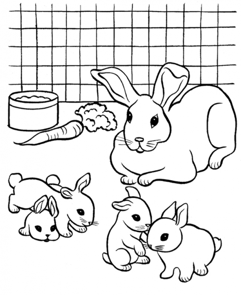 rabbit coloring pictures free printable rabbit coloring pages for kids pictures rabbit coloring