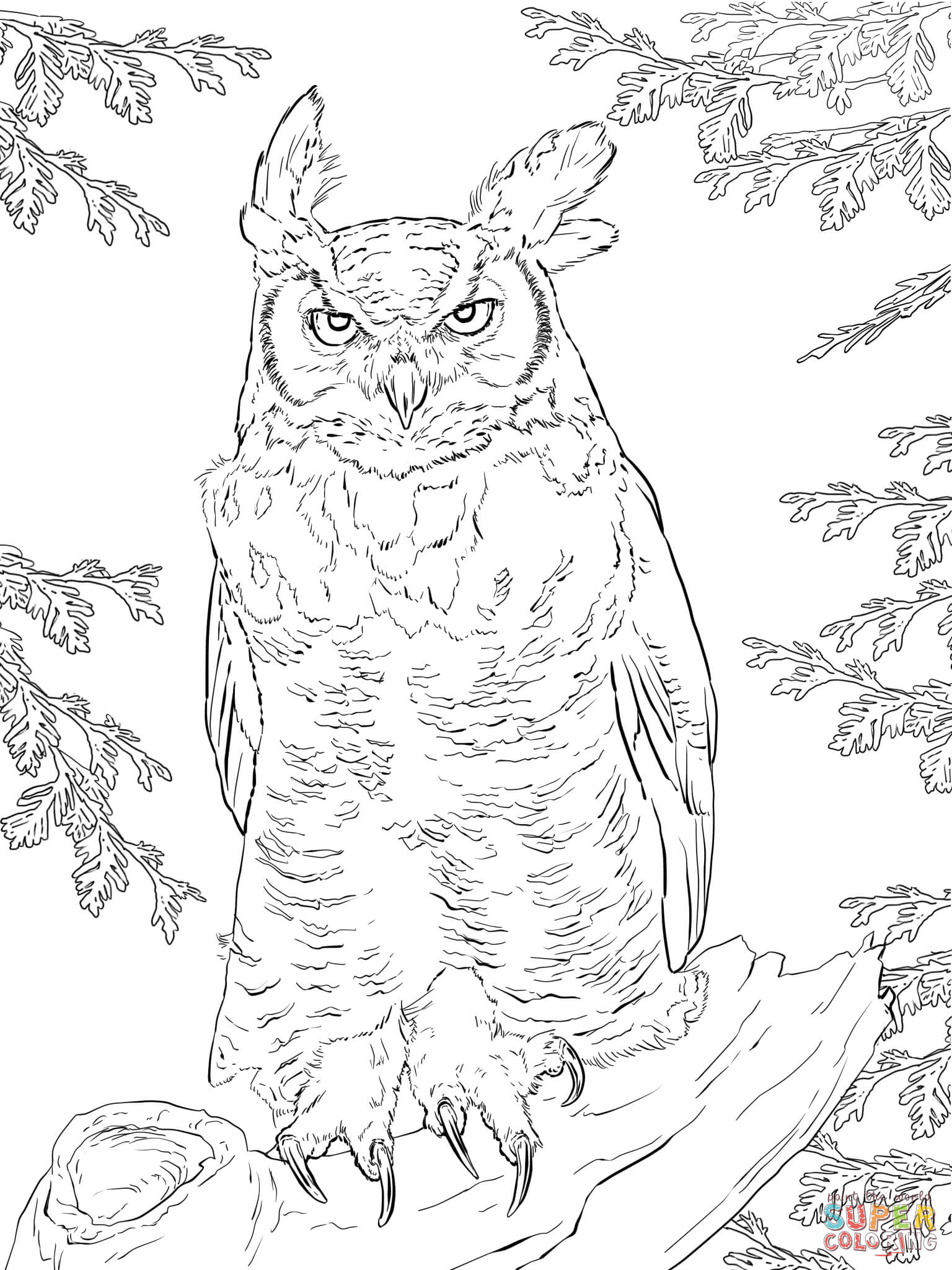 real coloring pages real animal coloring pages coloring home coloring pages real