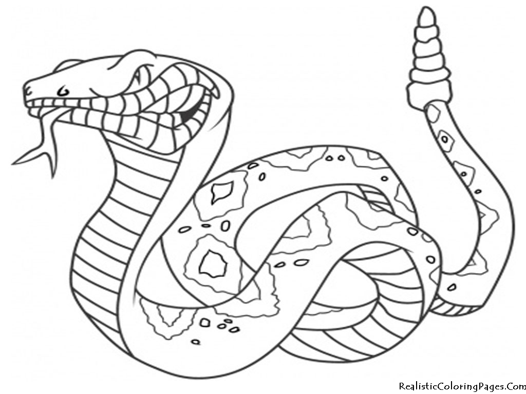 real coloring pages real looking dinosaur coloring pages in 2020 dinosaur coloring real pages