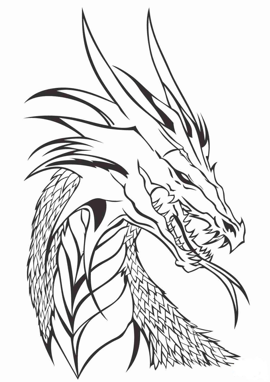 realistic hard dragon coloring pages realistic dragon coloring page youngandtaecom in 2020 pages dragon coloring hard realistic