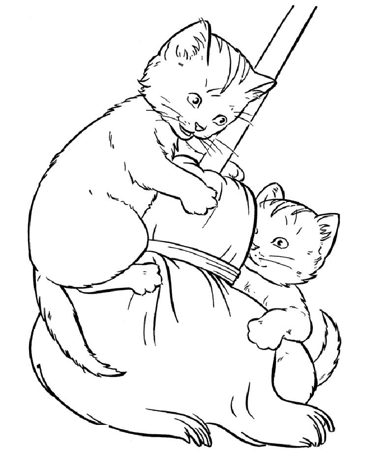realistic kitten cat coloring pages 30 free printable cat coloring pages kitten coloring cat pages realistic