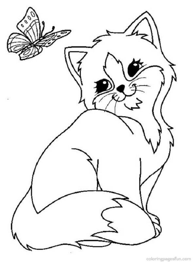 realistic kitten cat coloring pages cat coloring pages for adults cat coloring page free cat coloring realistic pages kitten