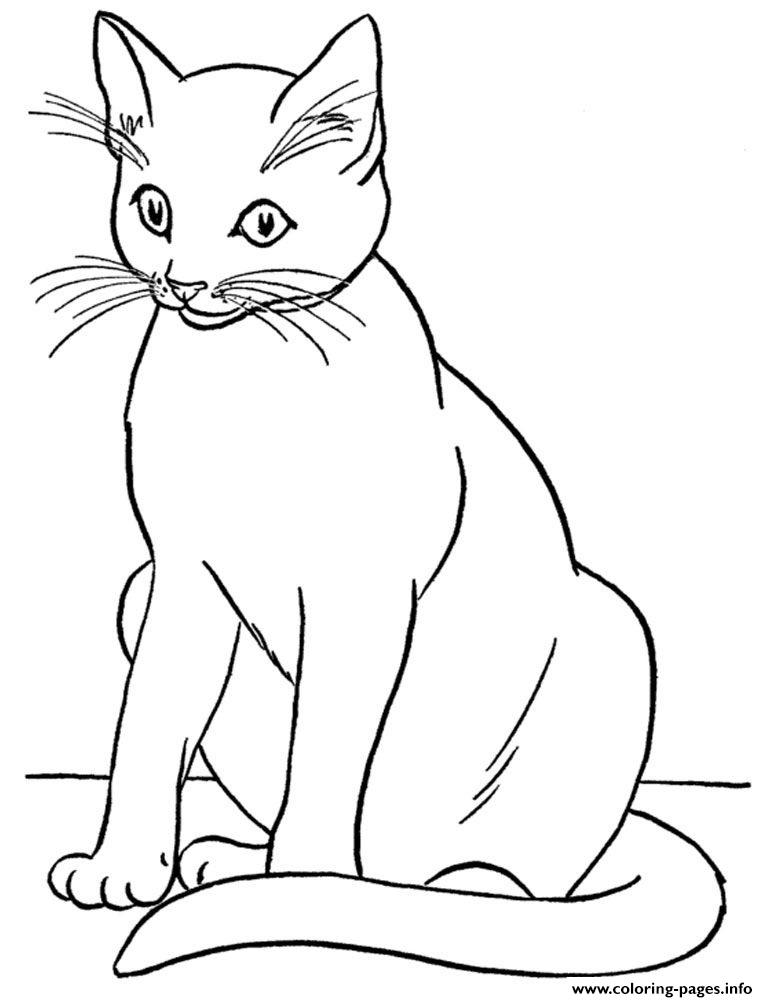 realistic kitten cat coloring pages cute kitten in basket of shamrock coloring page free pages cat kitten coloring realistic