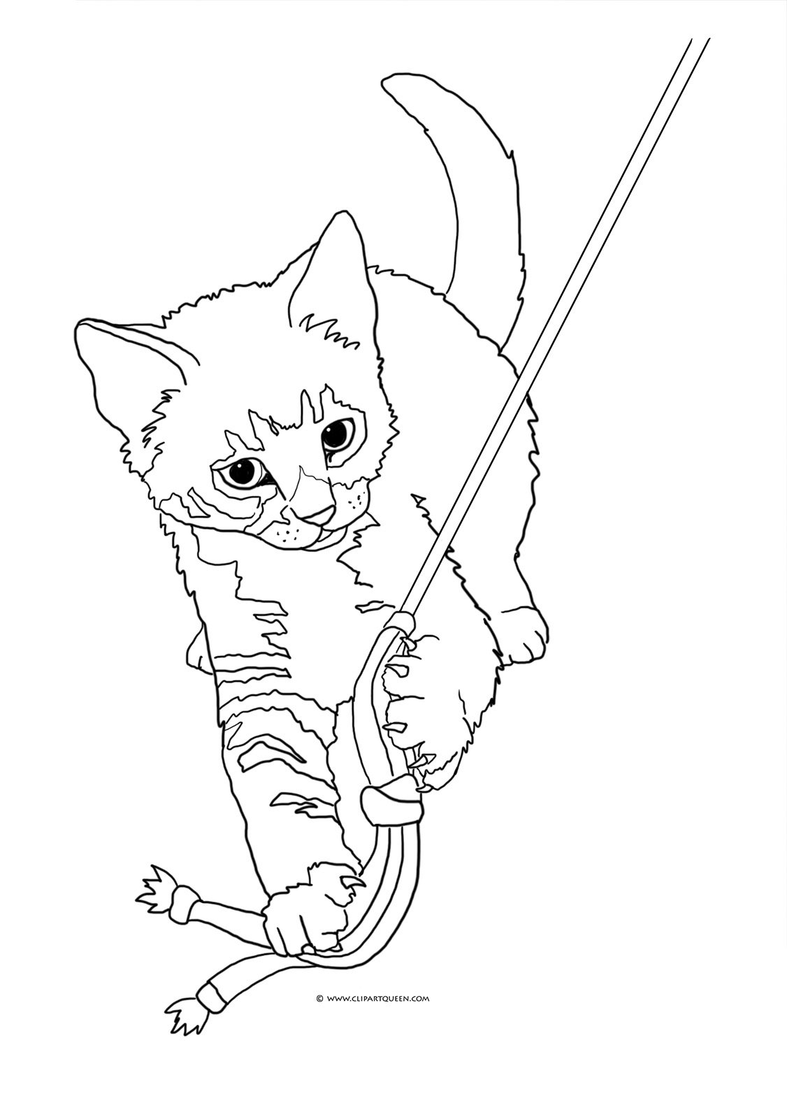 realistic kitten cat coloring pages realistic cat coloring page for kids animal coloring pages realistic kitten coloring cat