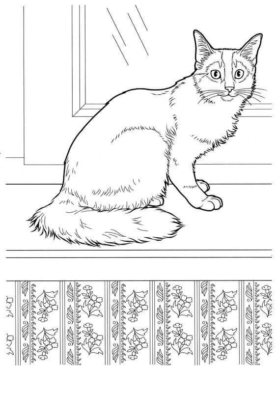 realistic kitten cat coloring pages selected realistic cat coloring pages luxury for adults cat coloring realistic kitten pages