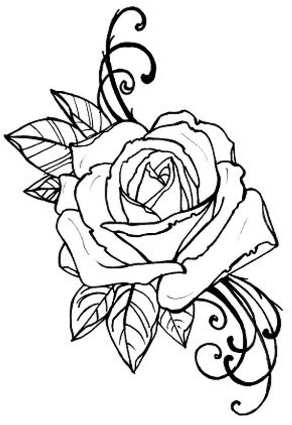 rose coloring page rose garden drawing at getdrawings free download coloring rose page