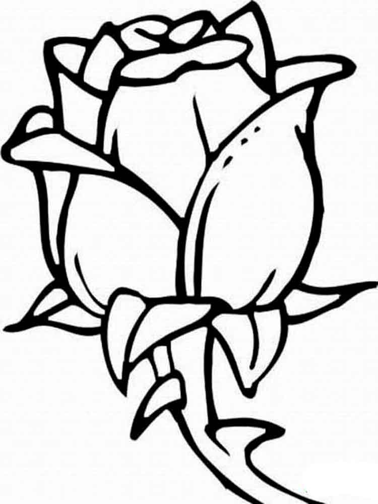 rose for coloring free printable roses coloring pages for kids coloring rose for