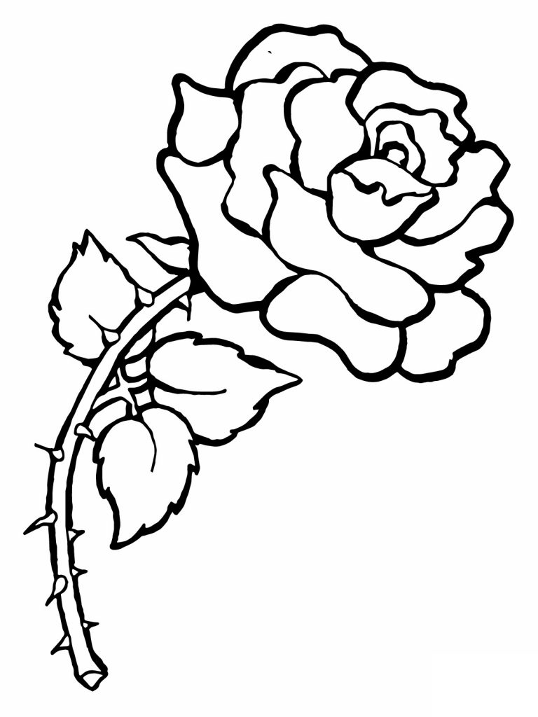 rose for coloring printable rose coloring pages for kids for rose coloring