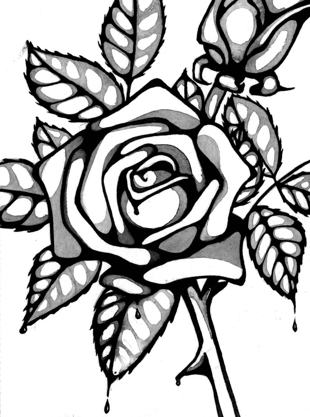 rose to color flowers coloring pages color to rose