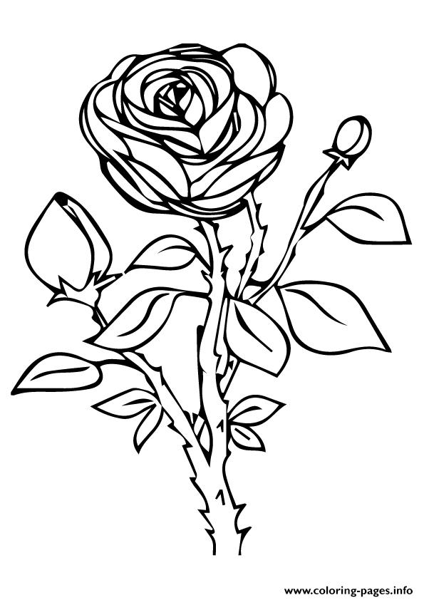 rose to color free printable roses coloring pages for kids color to rose