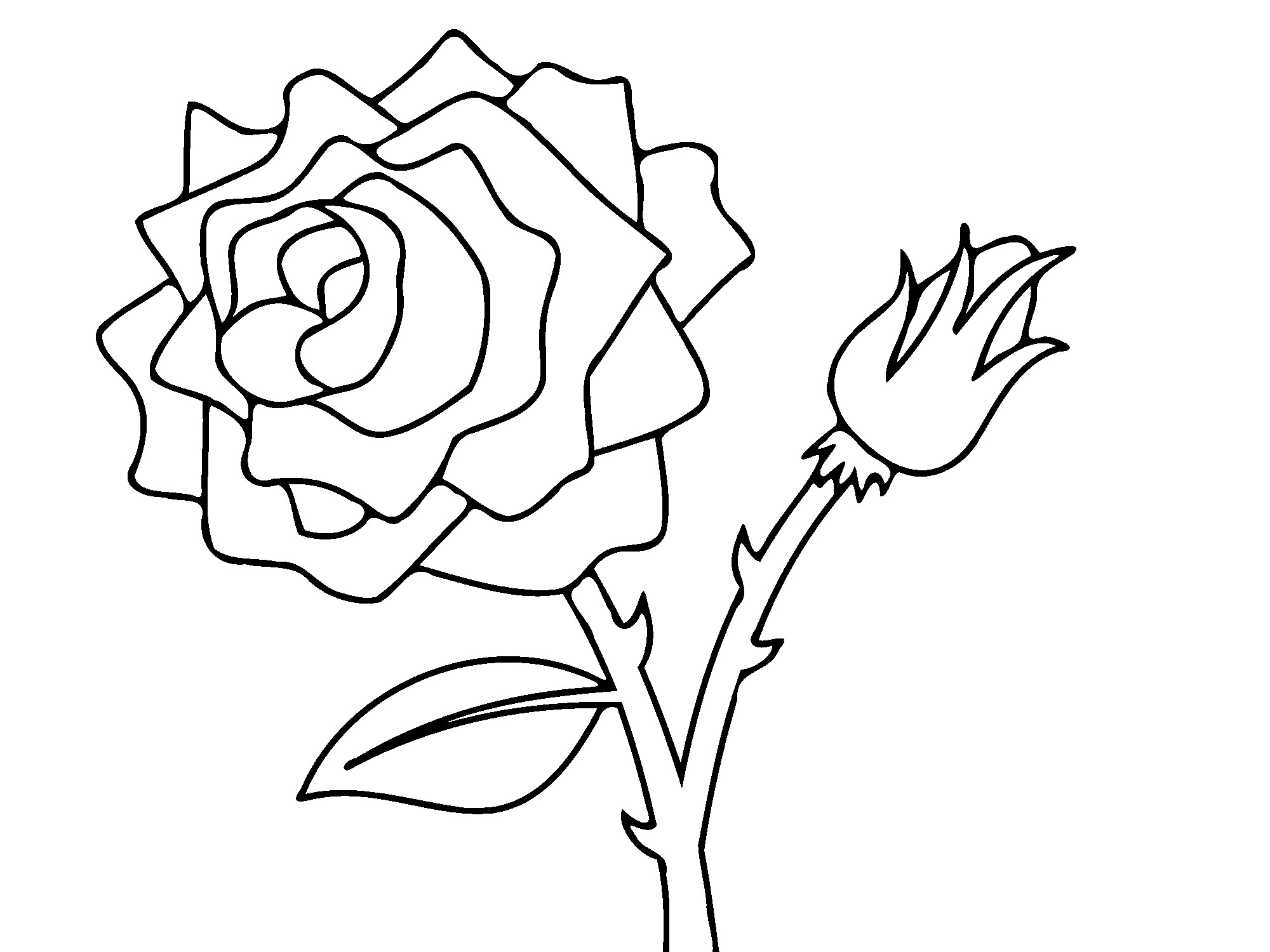 rose to color free printable roses coloring pages for kids color to rose 1 1