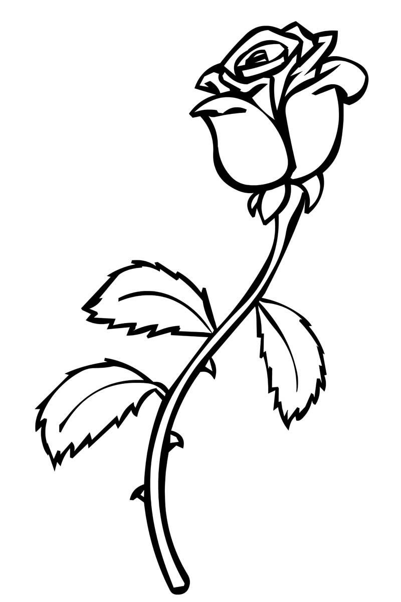 rose to color free printable roses coloring pages for kids to rose color