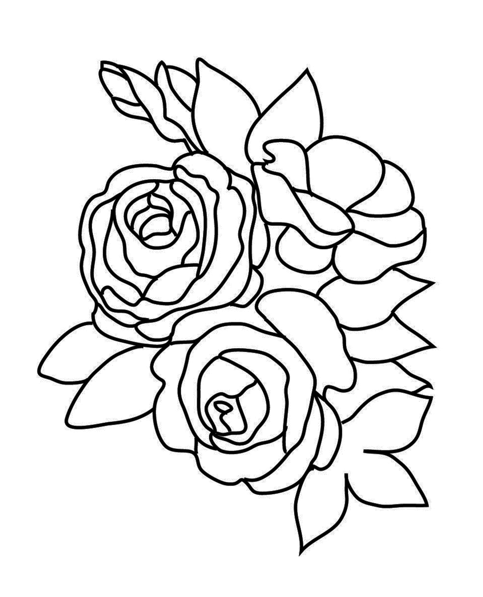 rose to color free printable roses coloring pages for kids to rose color 1 1