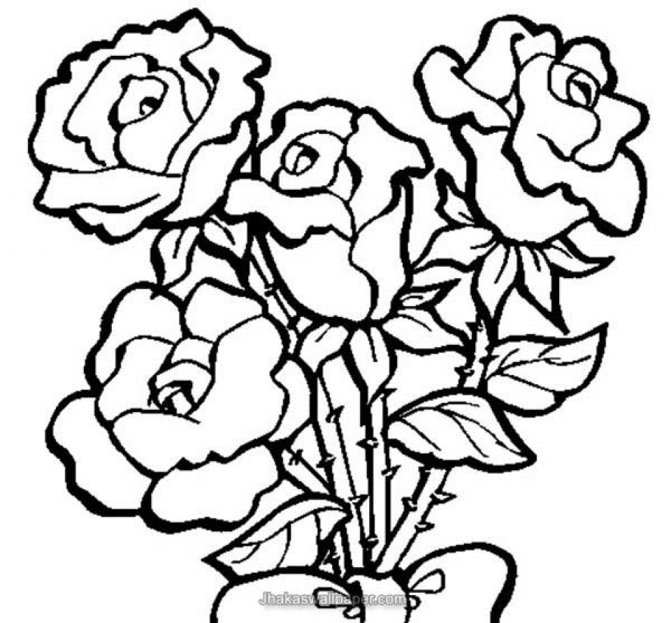 rose to color get this free roses coloring pages for adults to print 16629 color to rose