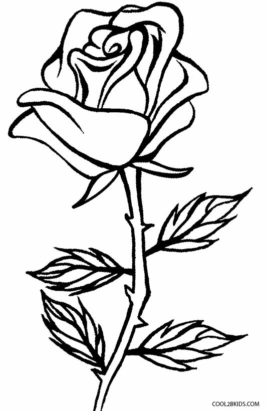 rose to color rose flower coloring pages getcoloringpagescom to color rose