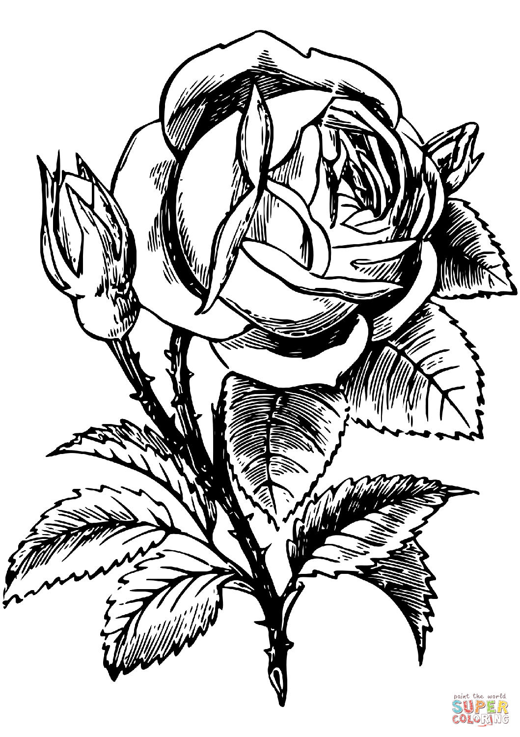 rose to color roses coloring pages to download and print for free rose to color 1 1