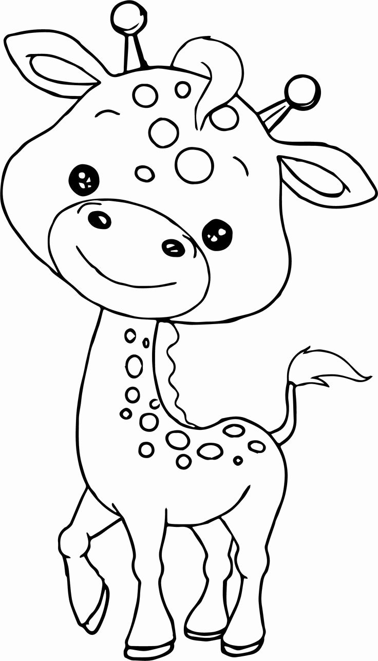 safari animal coloring pages cute and latest baby coloring pages animal pages safari coloring