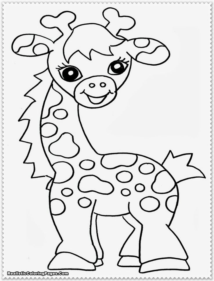 safari animal coloring pages safari coloring pages to download and print for free coloring safari animal pages