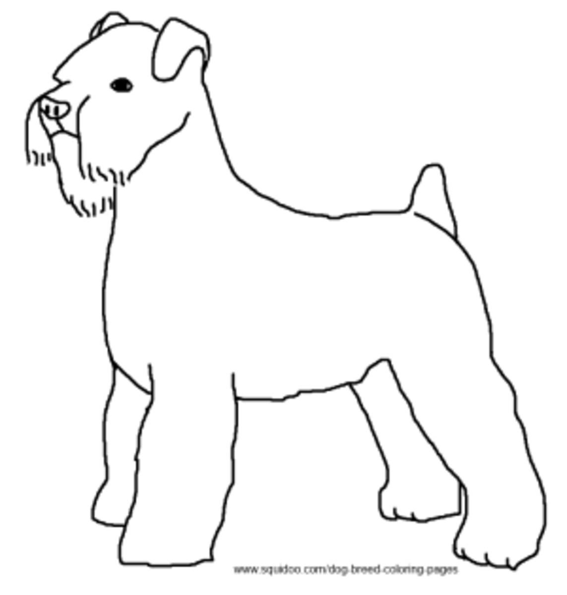 schnauzer coloring pages dogs online coloring pages page 1 pages coloring schnauzer