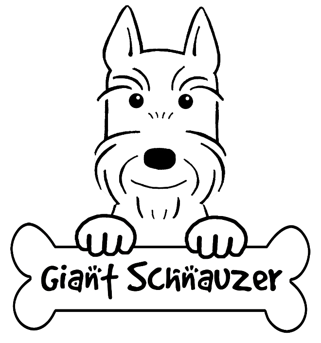 schnauzer coloring pages schnauzer line drawing at getdrawings free download coloring schnauzer pages