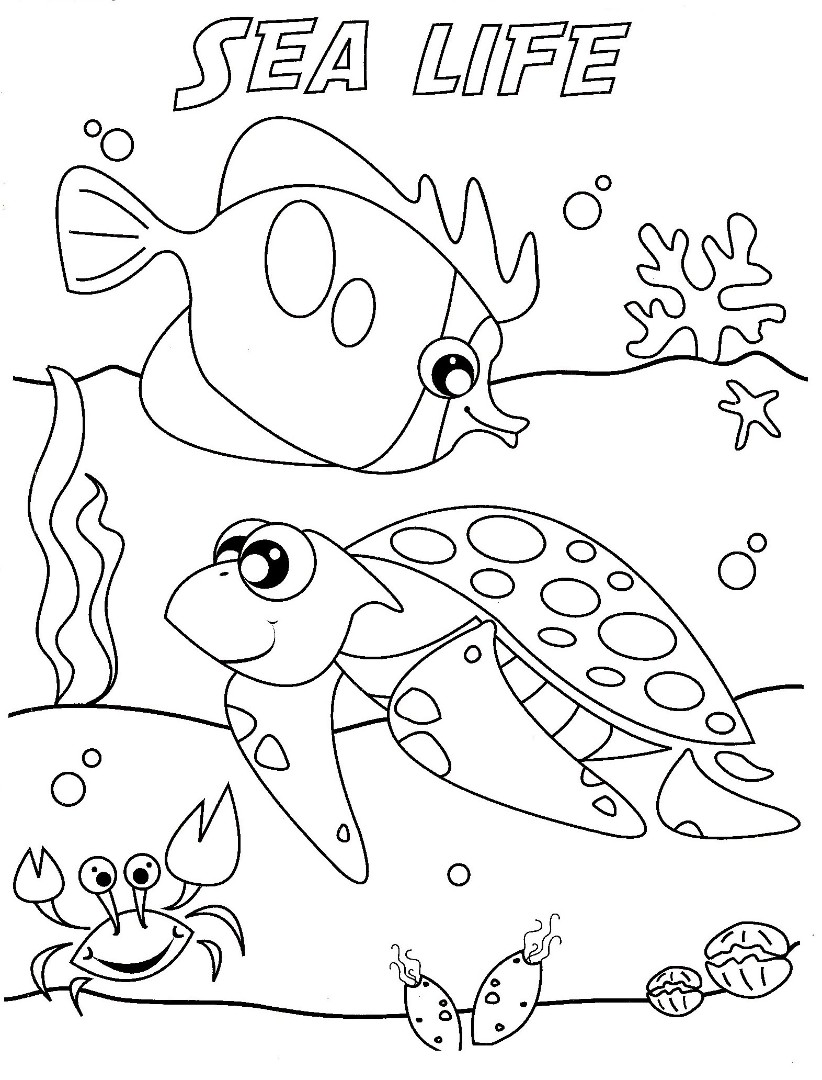 sea life animals coloring pages free under the sea coloring pages to print for kids sea coloring life pages animals