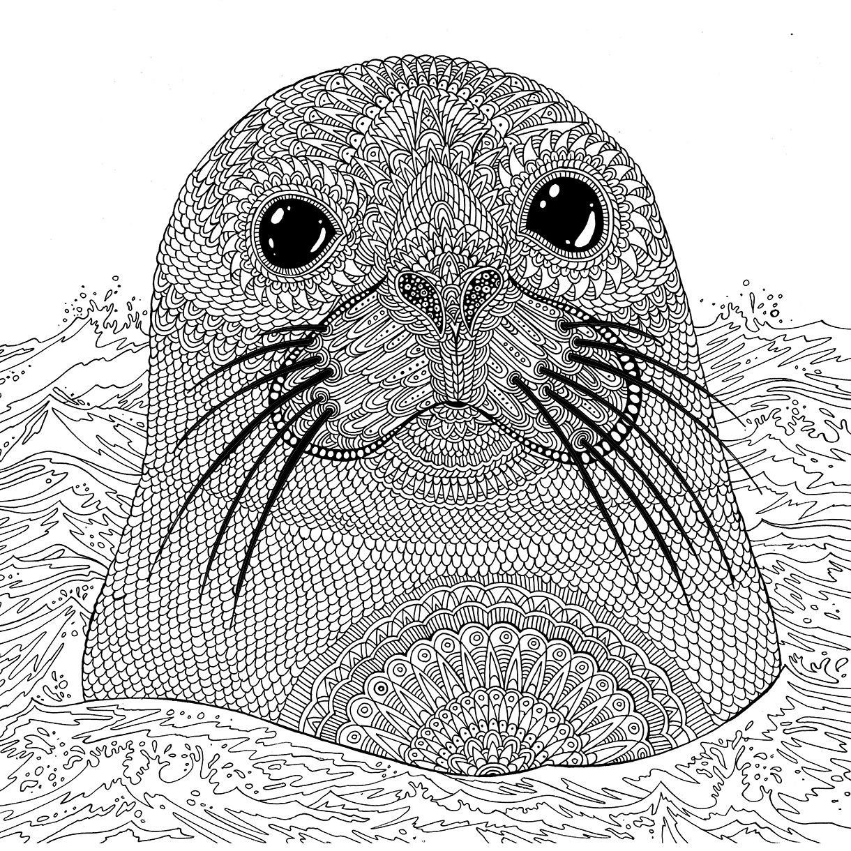 sea life animals coloring pages under the sea coloring pages at getcoloringscom free sea life pages animals coloring