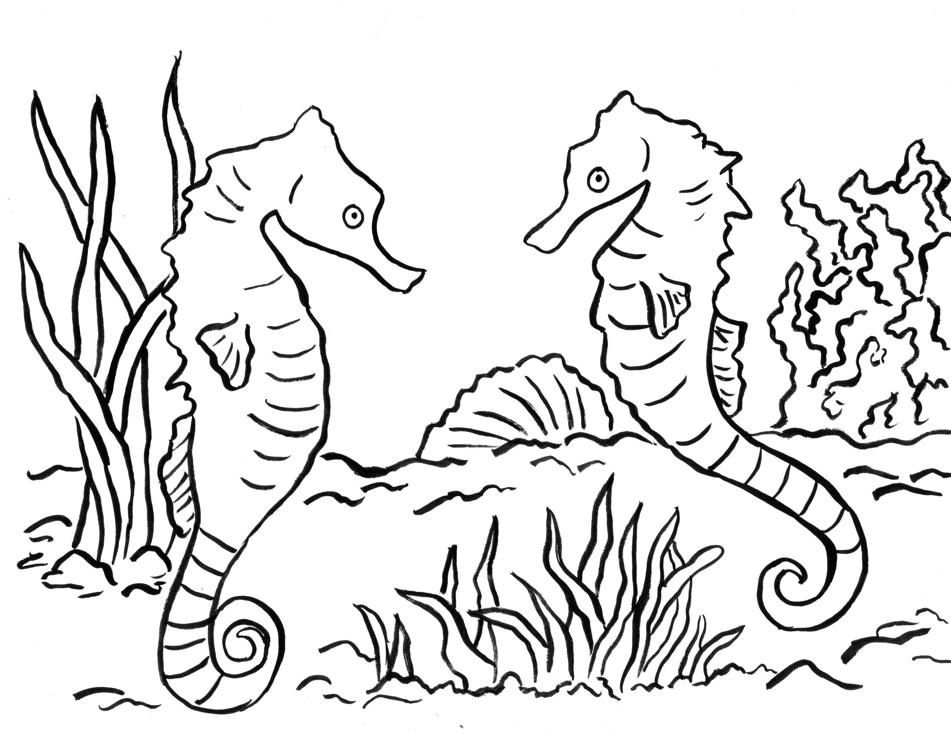 seahorse coloring pages to print cute cartoon seahorse animal ocean coloring page seahorse to print coloring pages