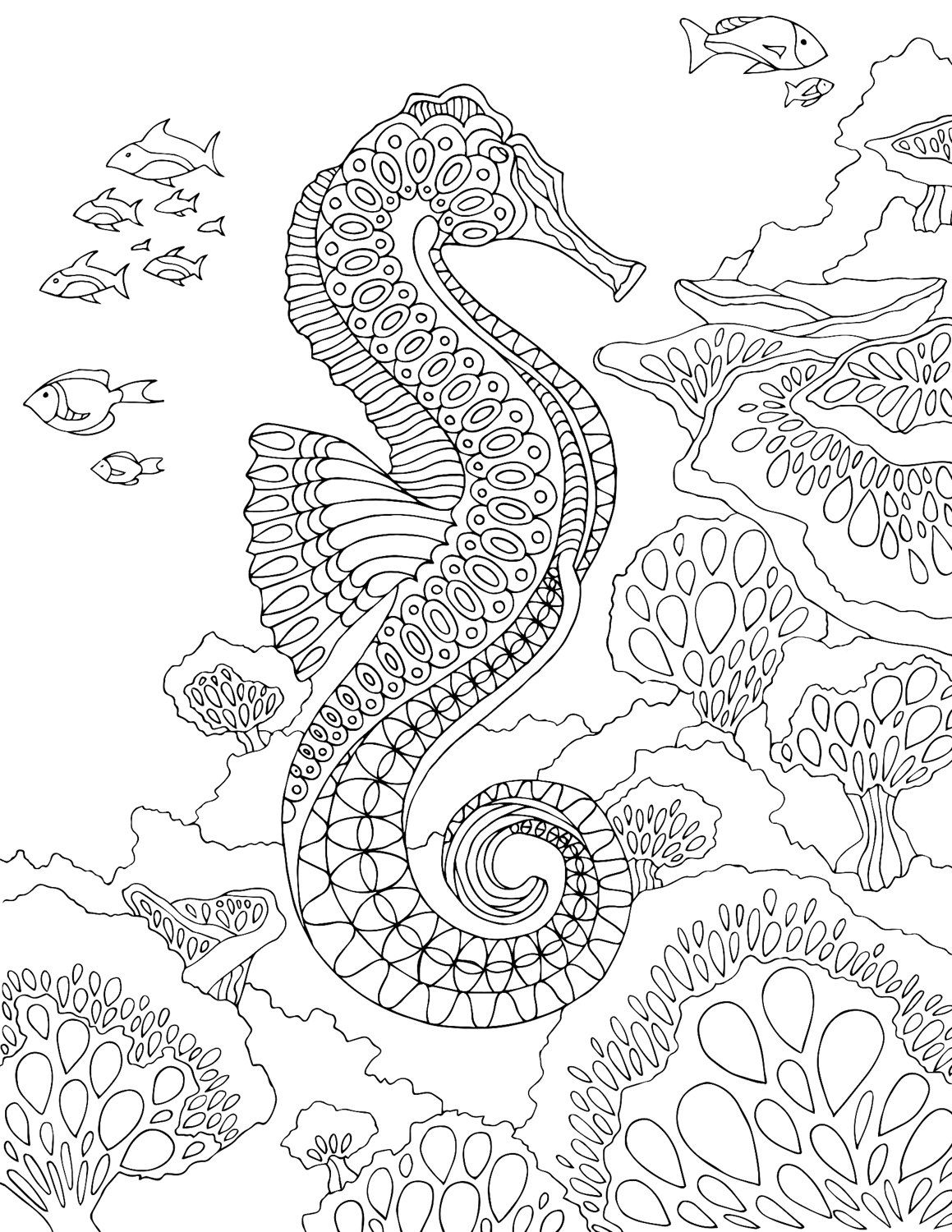 seahorse coloring pages to print free printable seahorse coloring pages for kids seahorse print coloring pages to