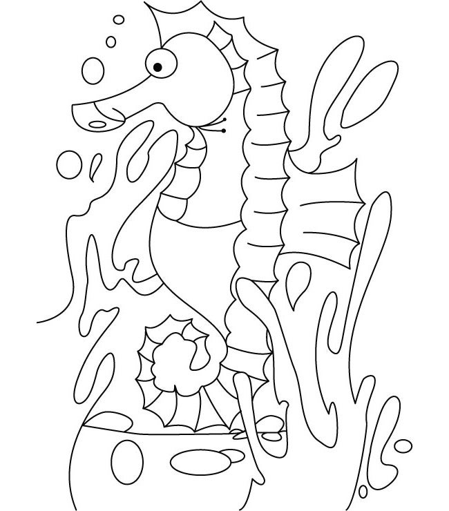 seahorse coloring pages to print seahorse for applique seahorse crafts seahorse outline coloring to print pages seahorse