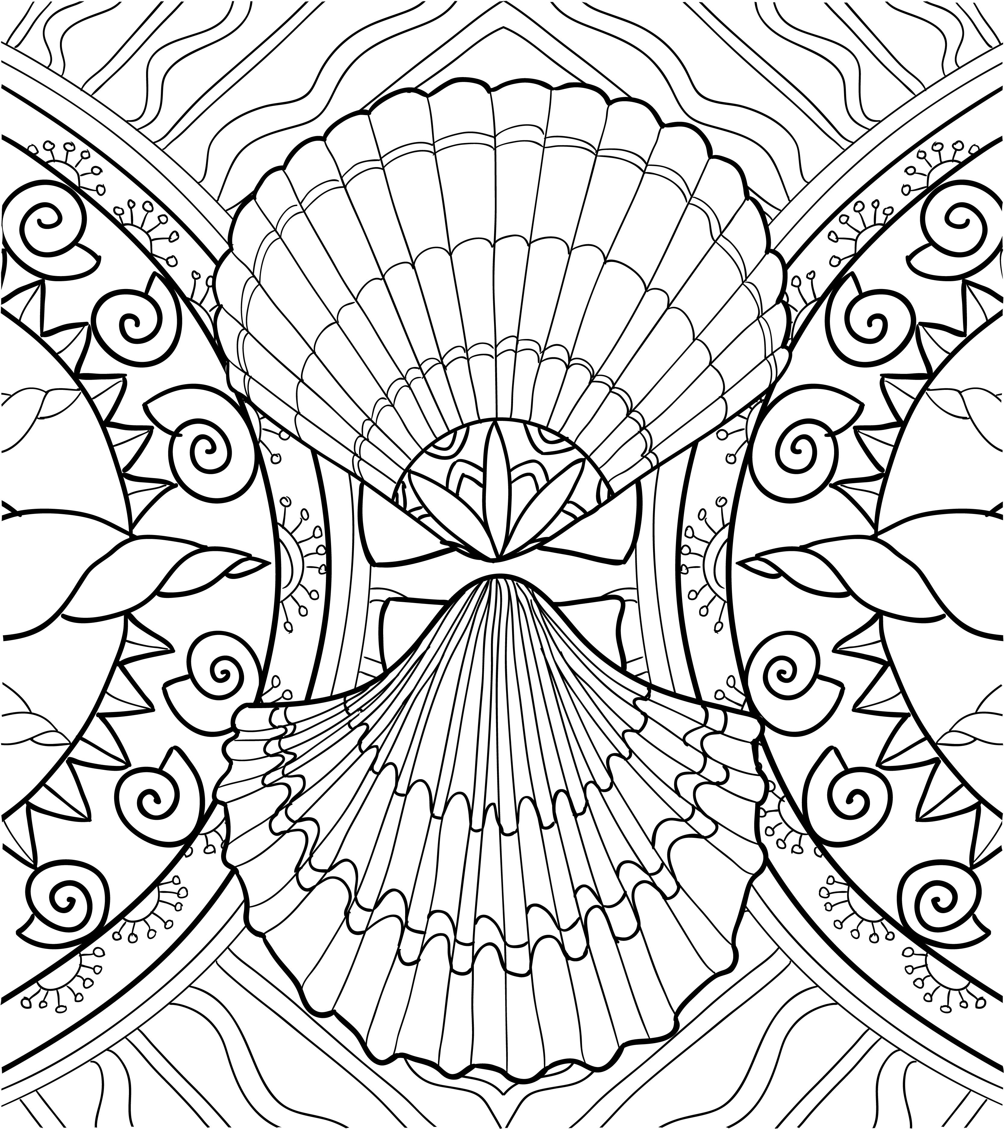 seashell coloring seashell coloring pages 1111 seashell coloring