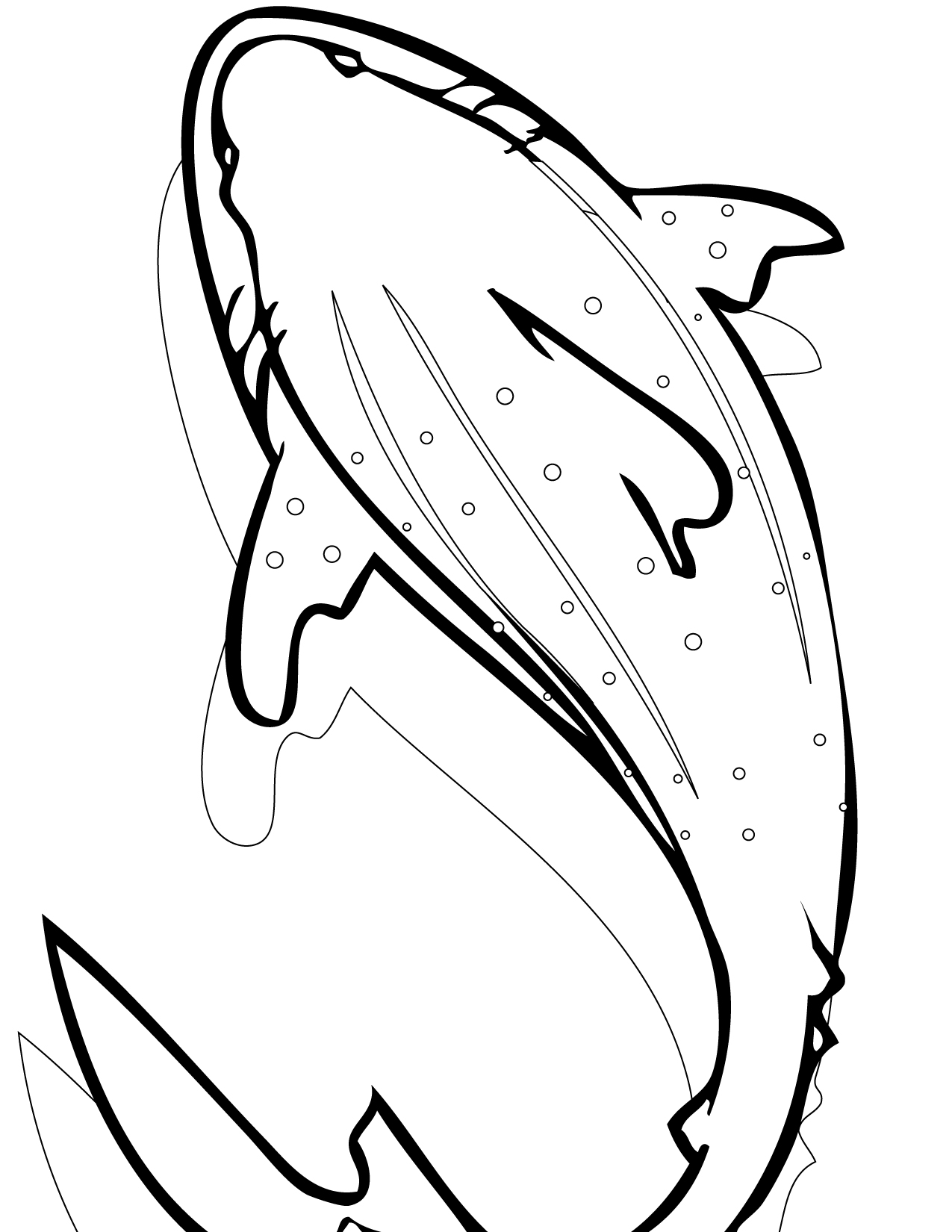 sharks to color sharks free to color for kids sharks kids coloring pages to color sharks