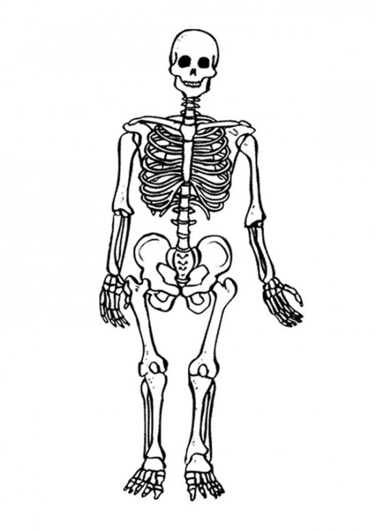 skeleton coloring pages coloring pages holidays free downloads skeleton coloring pages