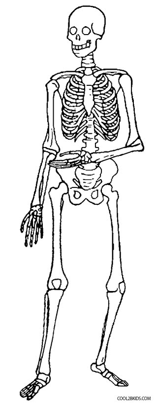 skeleton coloring pages skeleton with cowboy hat coloring page netart coloring skeleton pages