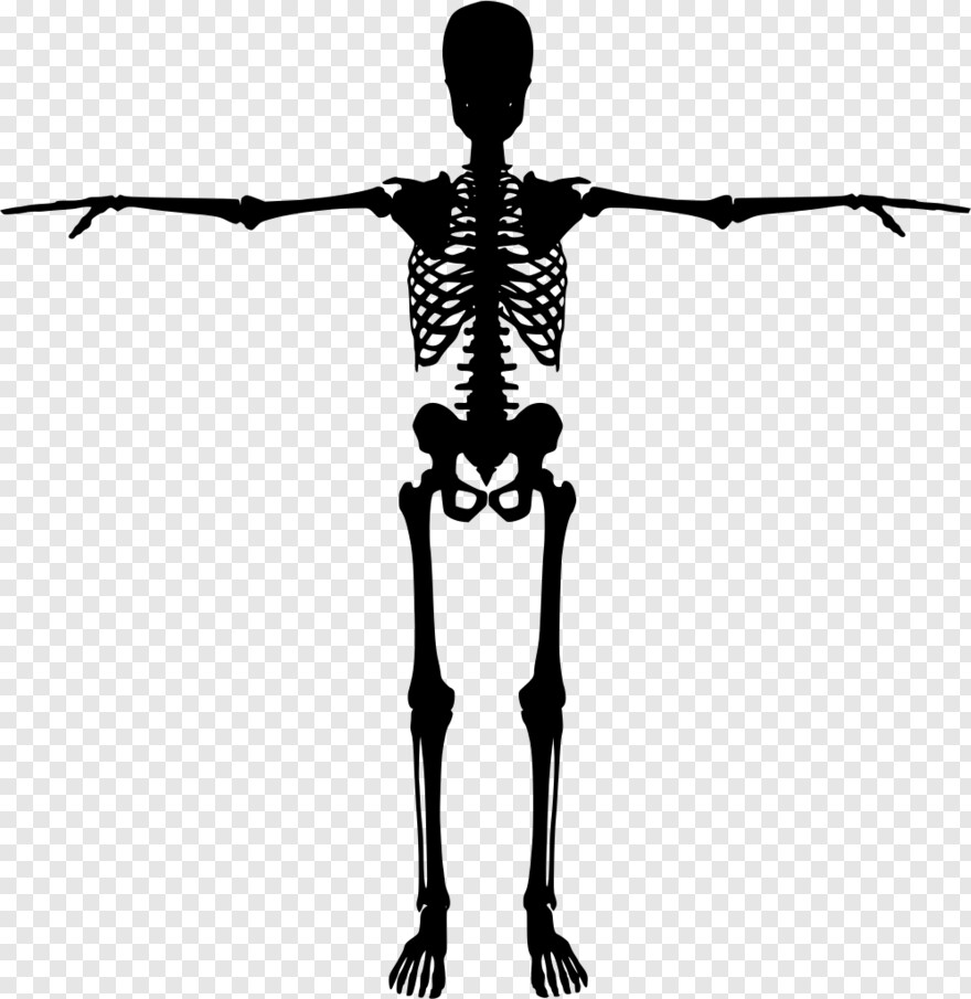 skeleton silhouette dancing skeleton skeleton silhouette png png download silhouette skeleton