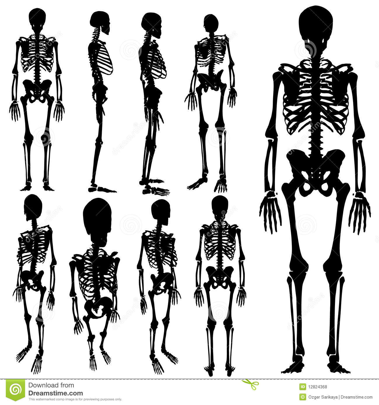 skeleton silhouette skeleton silhouette clipart 20 free cliparts download silhouette skeleton