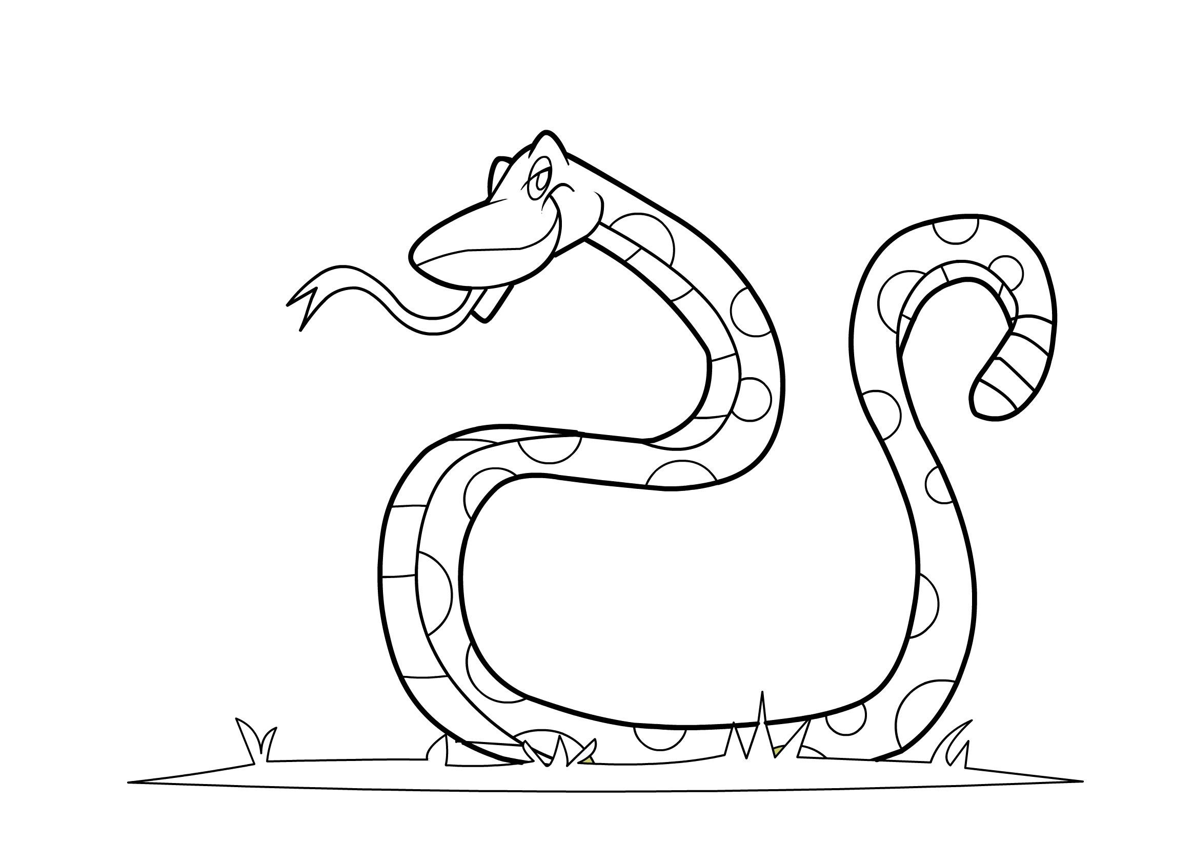 snake pictures for coloring free printable snake coloring pages for kids pictures for snake coloring