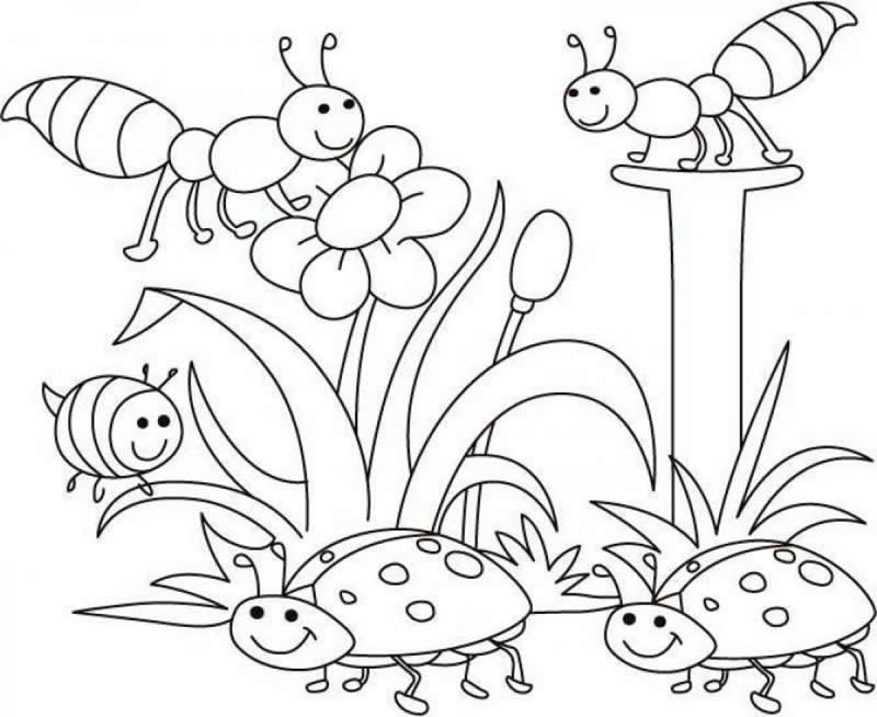 spring coloring pages for kids spring coloring pages 2018 dr odd coloring for spring pages kids