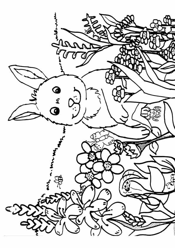 spring coloring pages for kids spring coloring pages to download and print for free for coloring pages kids spring